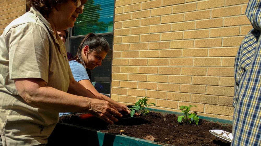 Master Gardeners-103328467.jpg