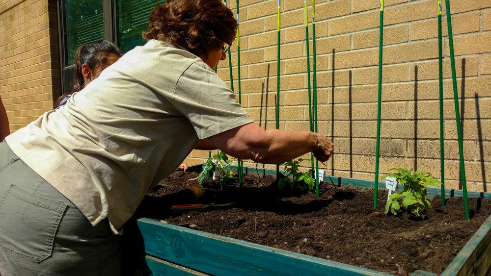 Master Gardeners-103600433.jpg