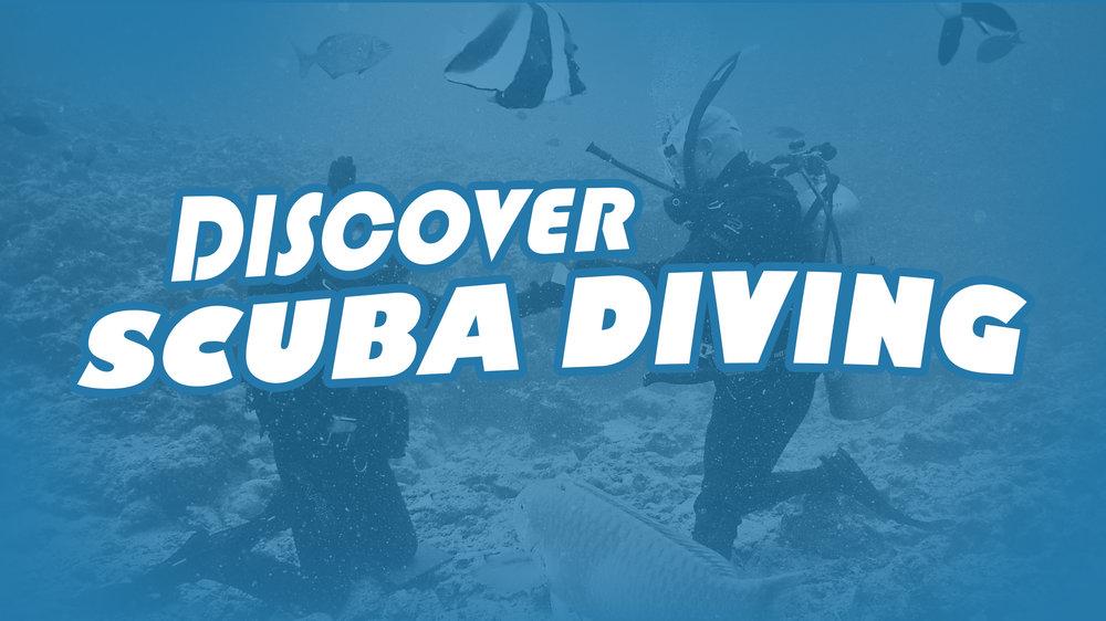 Discover Scuba Diving.jpg