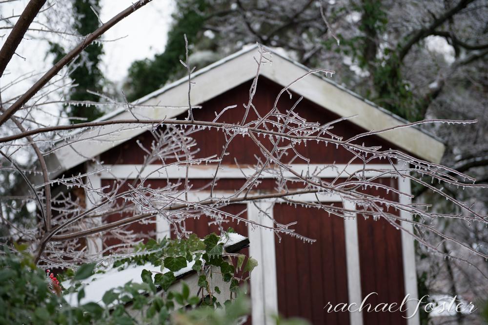 Ice Storm Photos (5 of 32).jpg