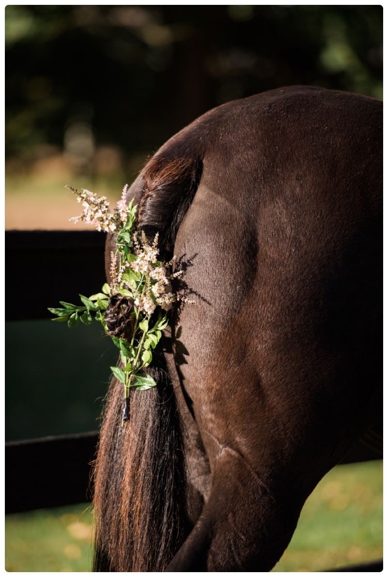 Horse Country Wedding by Rachael Foster Photography_0010.jpg