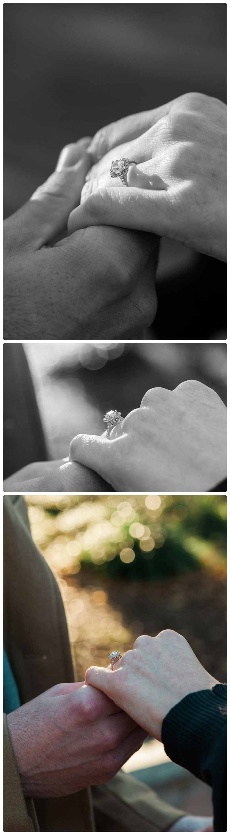 Engagement Session in Washington DC by Rachael Foster Photography_0007.jpg