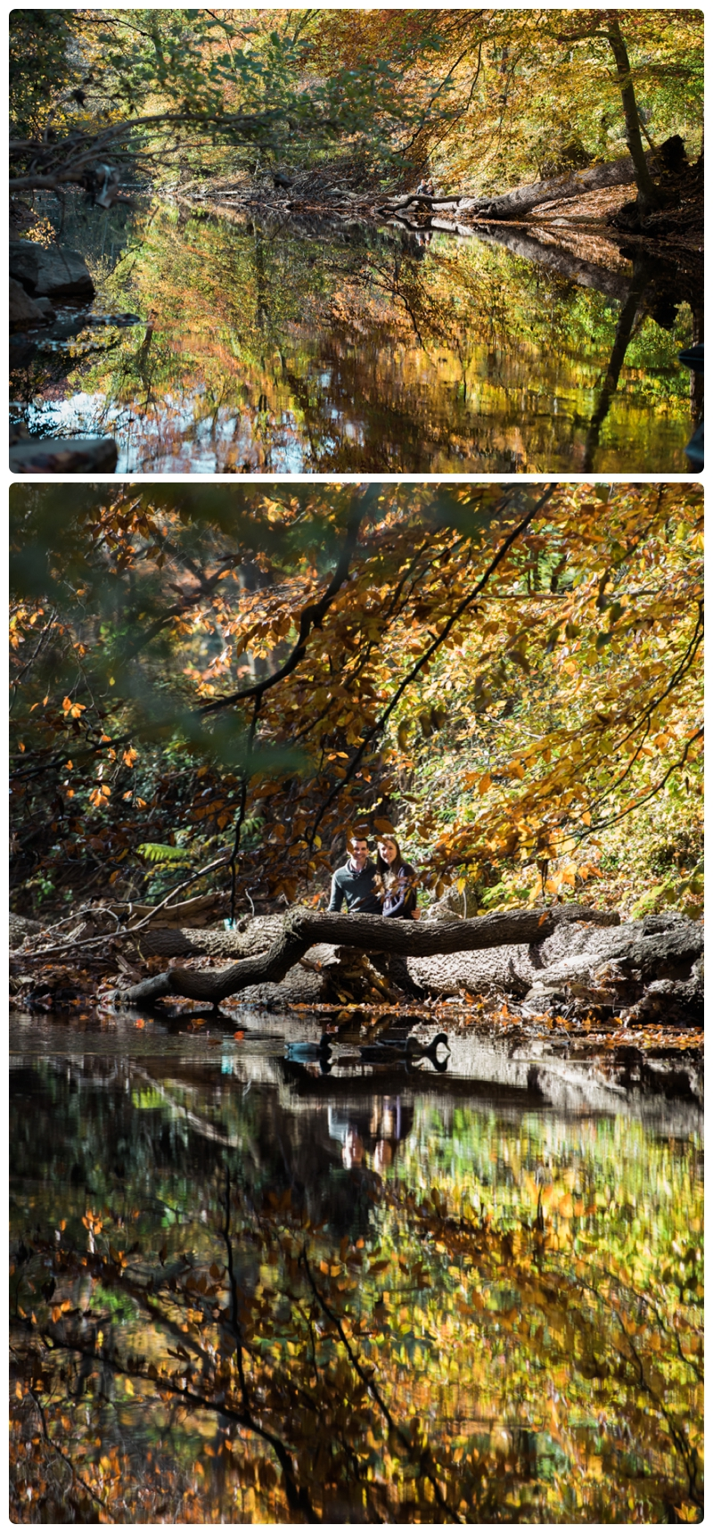 Engagement Session in Washington DC by Rachael Foster Photography_0016.jpg