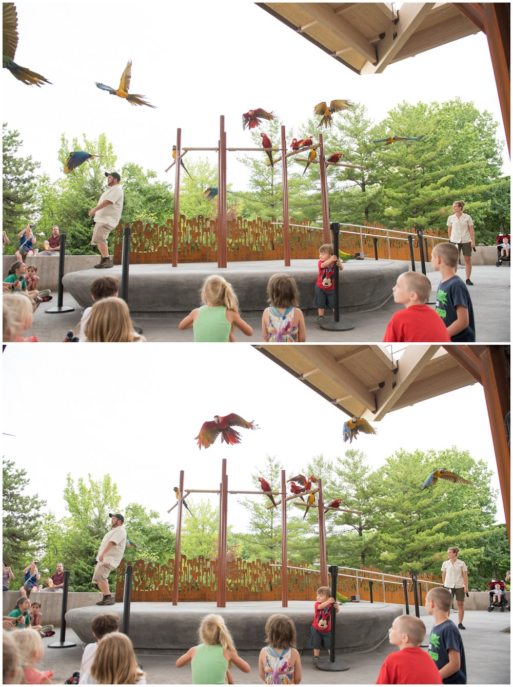 Indianpolis Zoo Bicentennial Pavilion Event by Rachael Foster Photography_0056.jpg