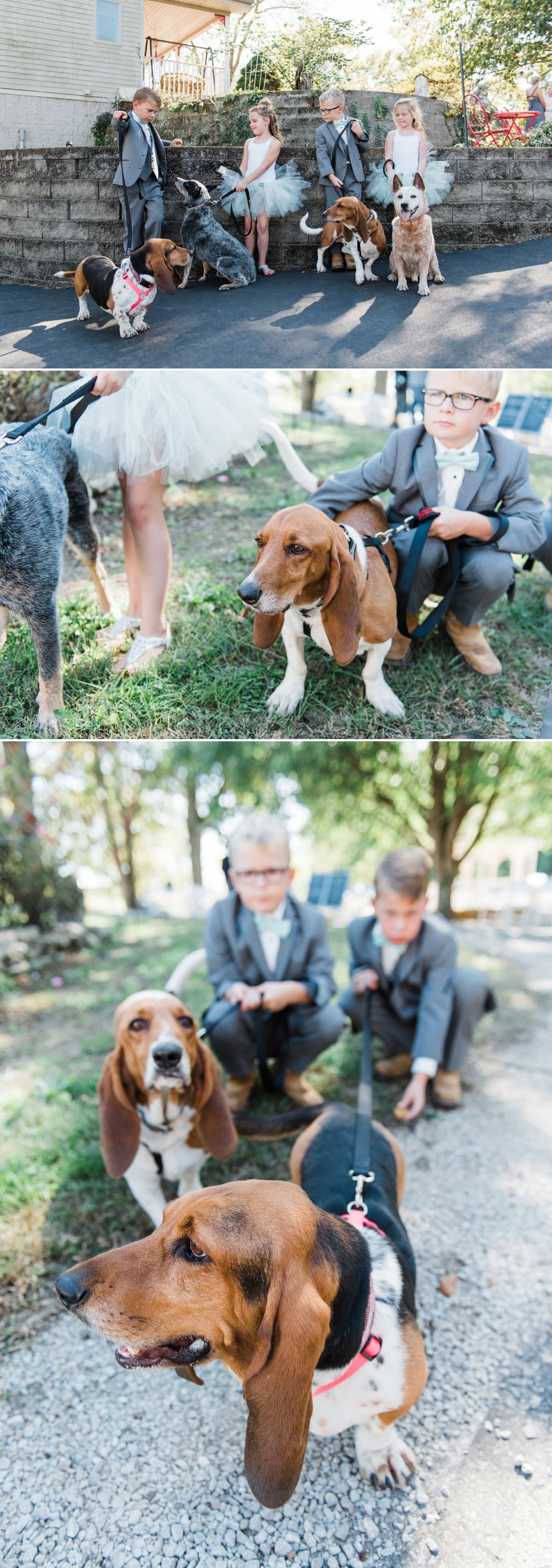 Rustic Barn Wedding with Sweet Rescue Dogs in Central Indiana_0008.jpg