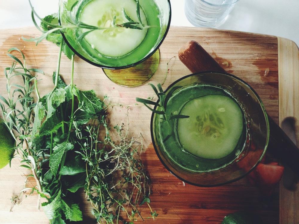 Cucumber (4).JPG