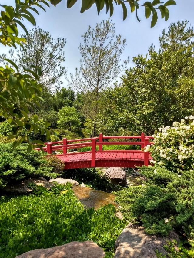Puente rojo en el Jardín Japones de Jardines de México
