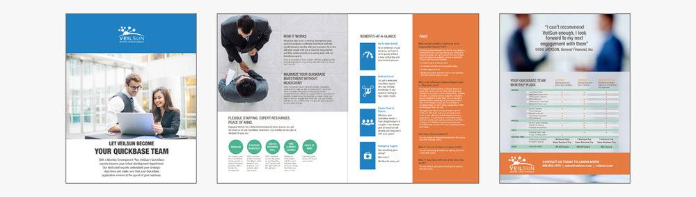 VeilSun Brochure