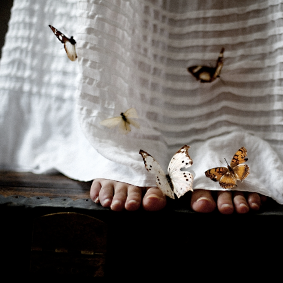 butterfly feet.png