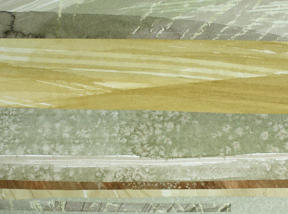 book cover50.jpg