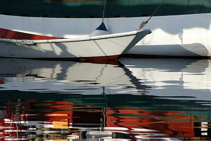 reflecting dory.jpg