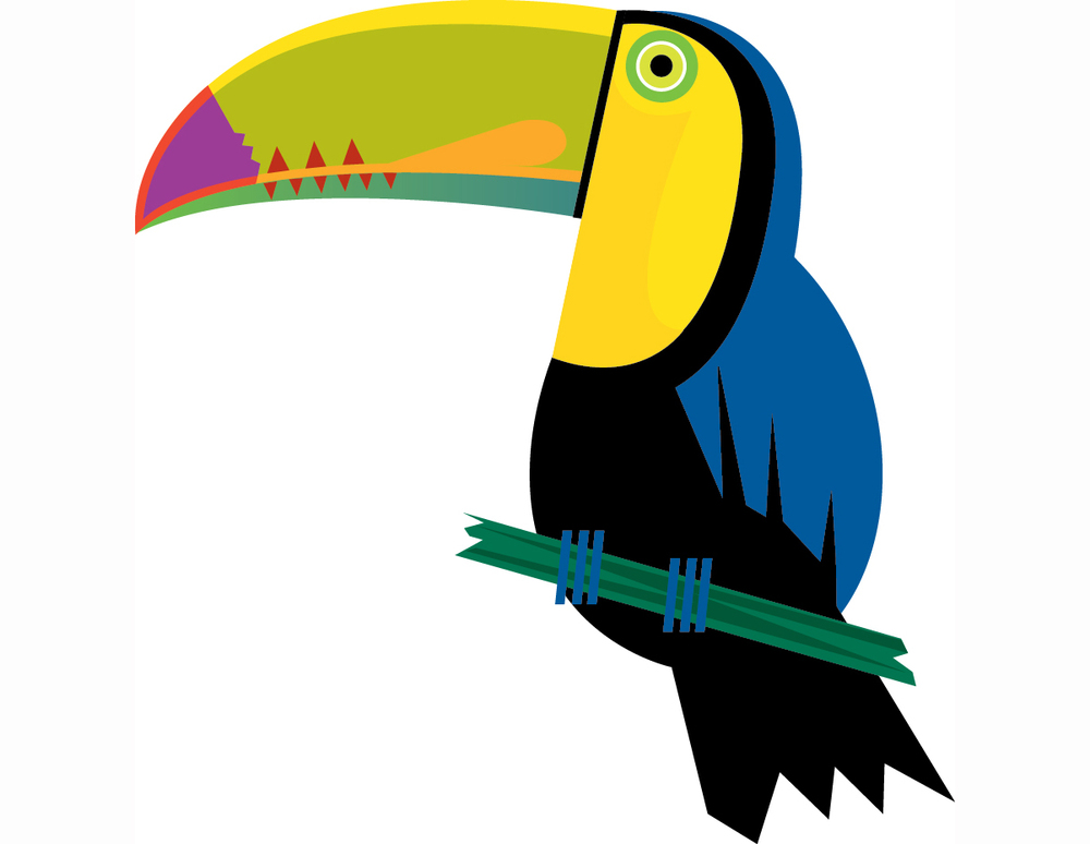 TOUCAN [Converted].jpg
