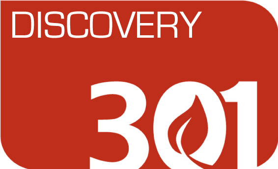 discovery301.png