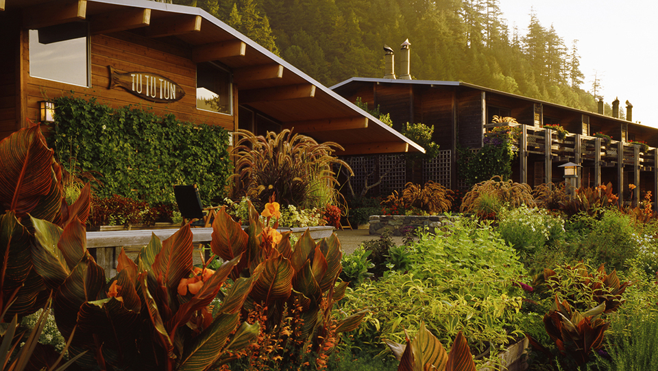 Canna Tropicana, Garden Poolside Terrace at Tu Tu Tun Lodge on the Rogue River, Gold Beach Oregon Photo: StickleyCreative