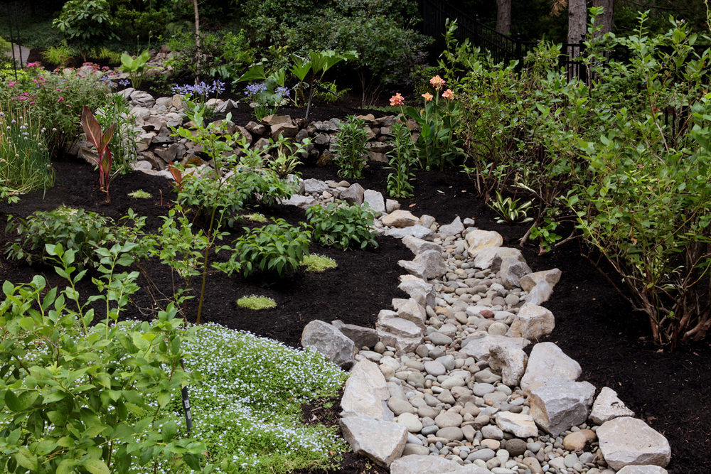 Transformed side garden with dry creek bed.  Looking up towards the woods. Photo by Fred Stickley / StickleyCreative