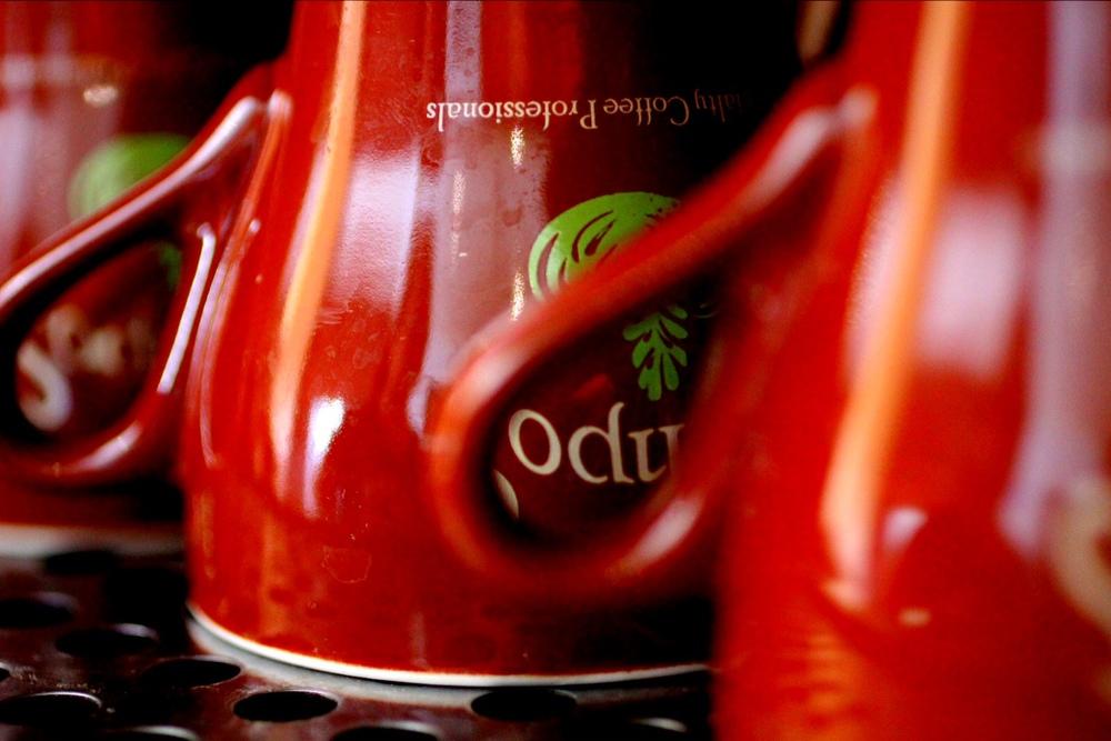 Campos Cups.JPG