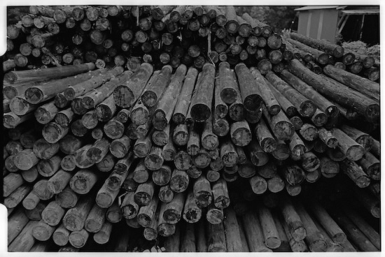 There are quite a fair bit of logging going on in Okutama (Leica M2 + Summicron 35mm ASPH)