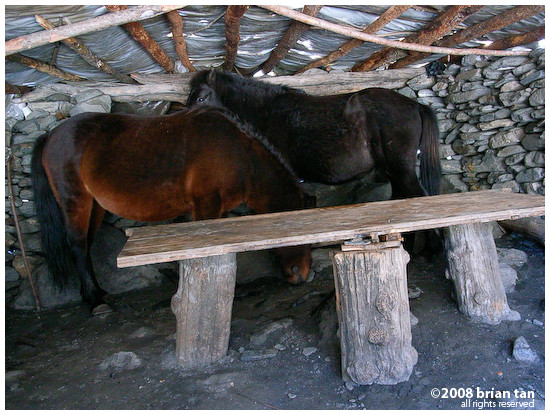 Two horses in a shed, Changping gou