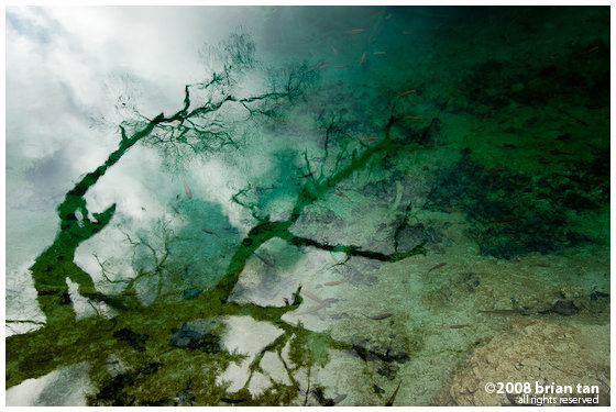 Reflection on Arrow Bamboo Lake