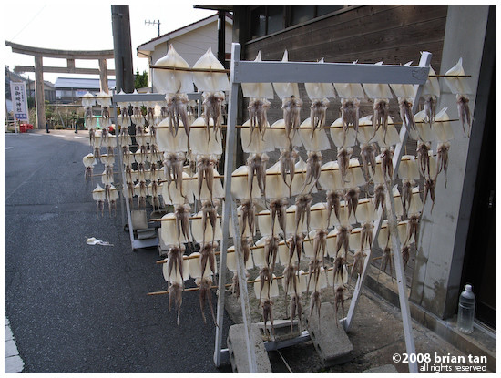 Drying seafood in Hinomisaki