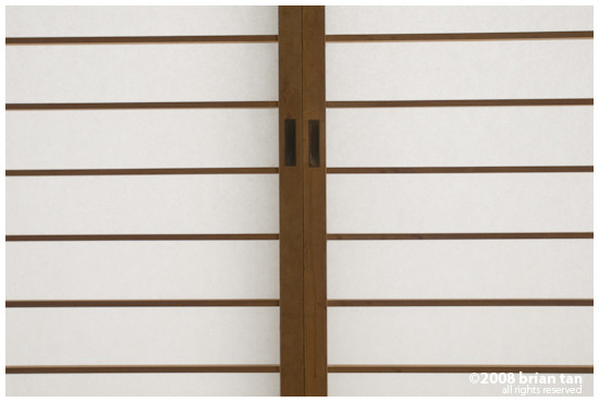 Traditional Japanese door made with paper. No I did not tear it...