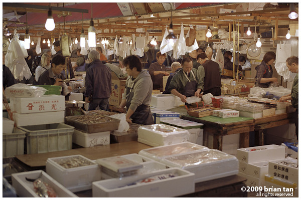 General section Tsukiji Market (if there is such a name)