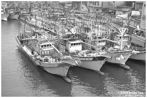 Fishing boats...