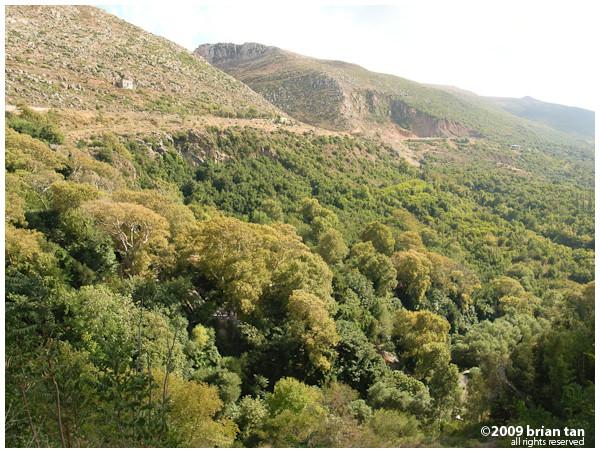 Hillsides of Harbiye (Daphne)