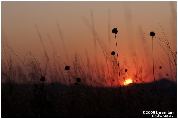 Sunset in Cappadocia, outside Goreme