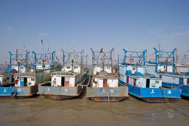 Fishing trawlers on Hengsha Island