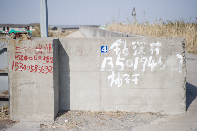 Mobile phone number graffiti peddling services