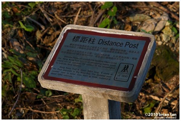 DSC4634.jpg