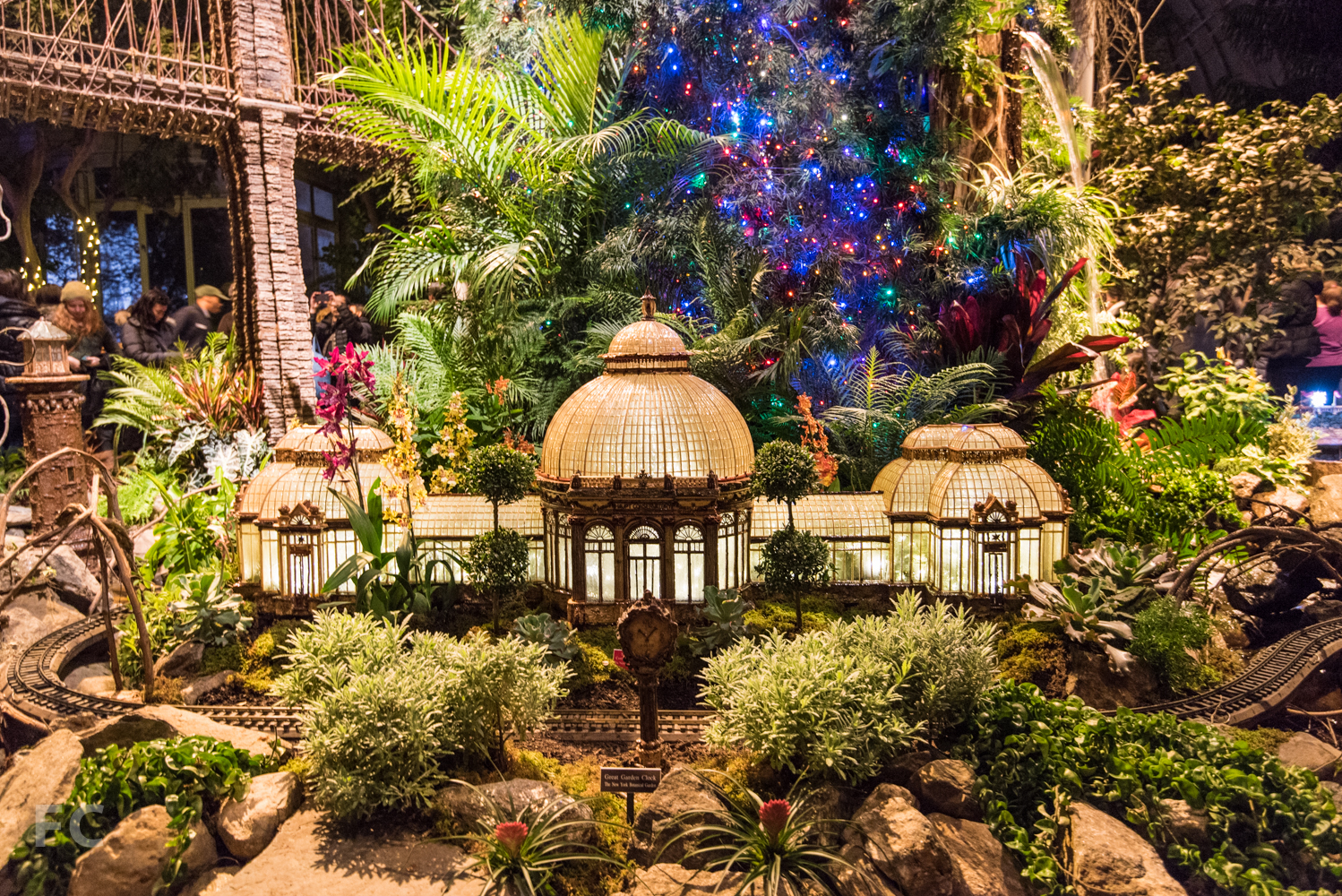 Holiday Train Show — FIELD CONDITION