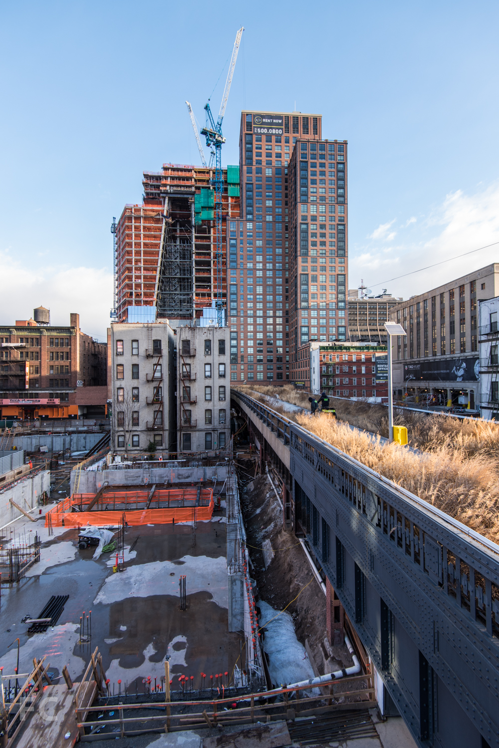 Looking north along the High Line.