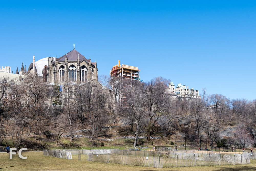 Looking west towards the cathedral (left) and the site (right) from Morningside Park.