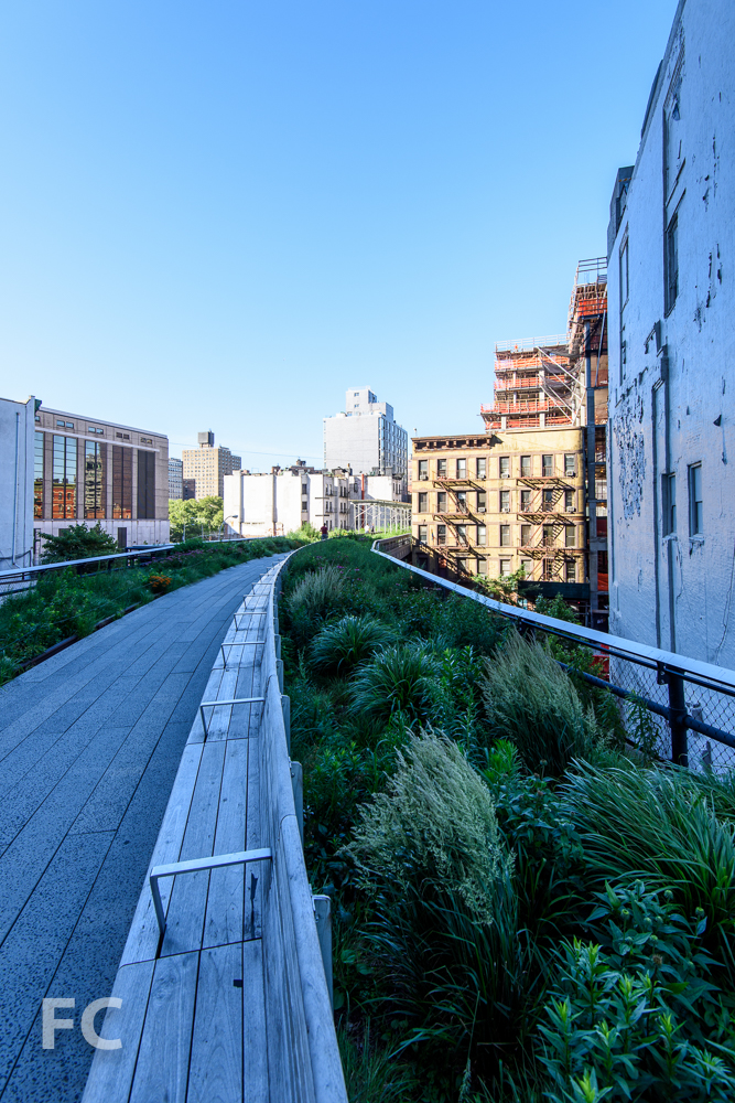 Looking south along the High Line.