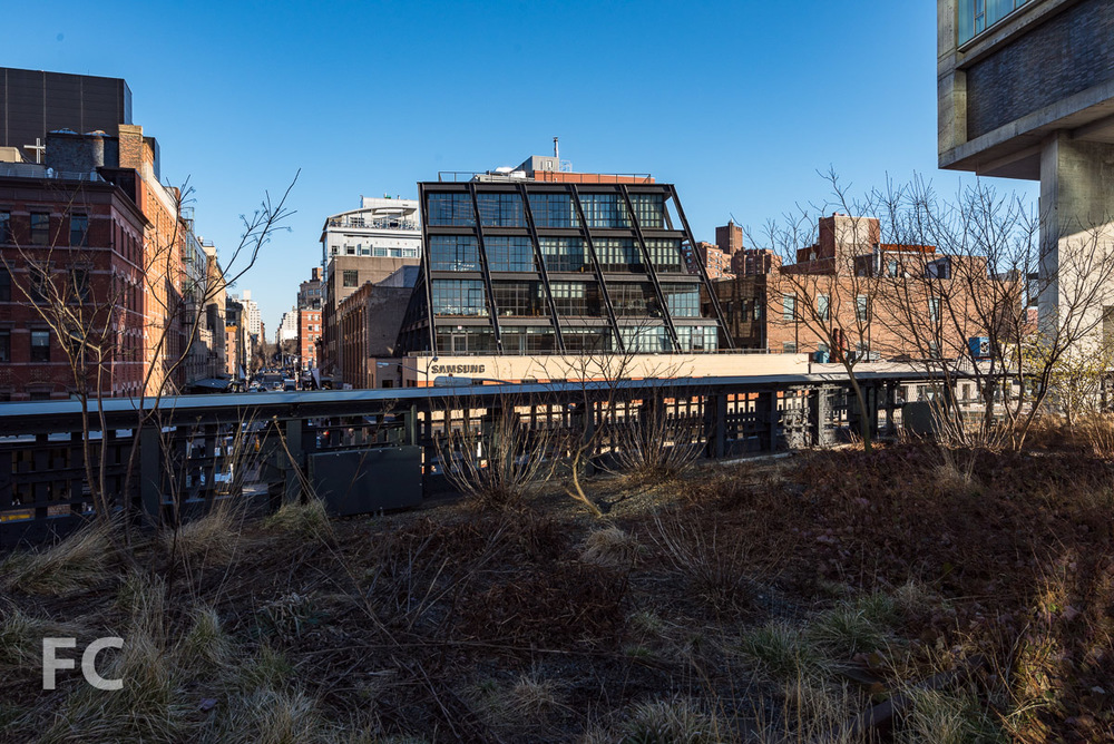 West facade from the High Line.