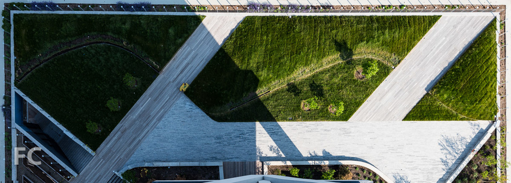 Looking down on the rooftop garden from a hotel room balcony.