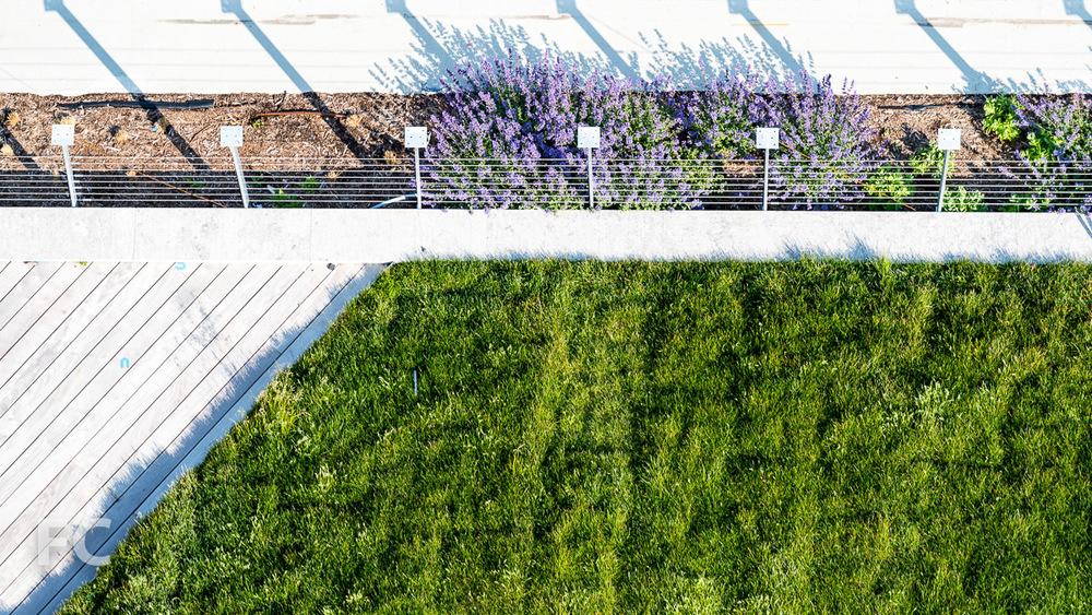 Rooftop garden details.