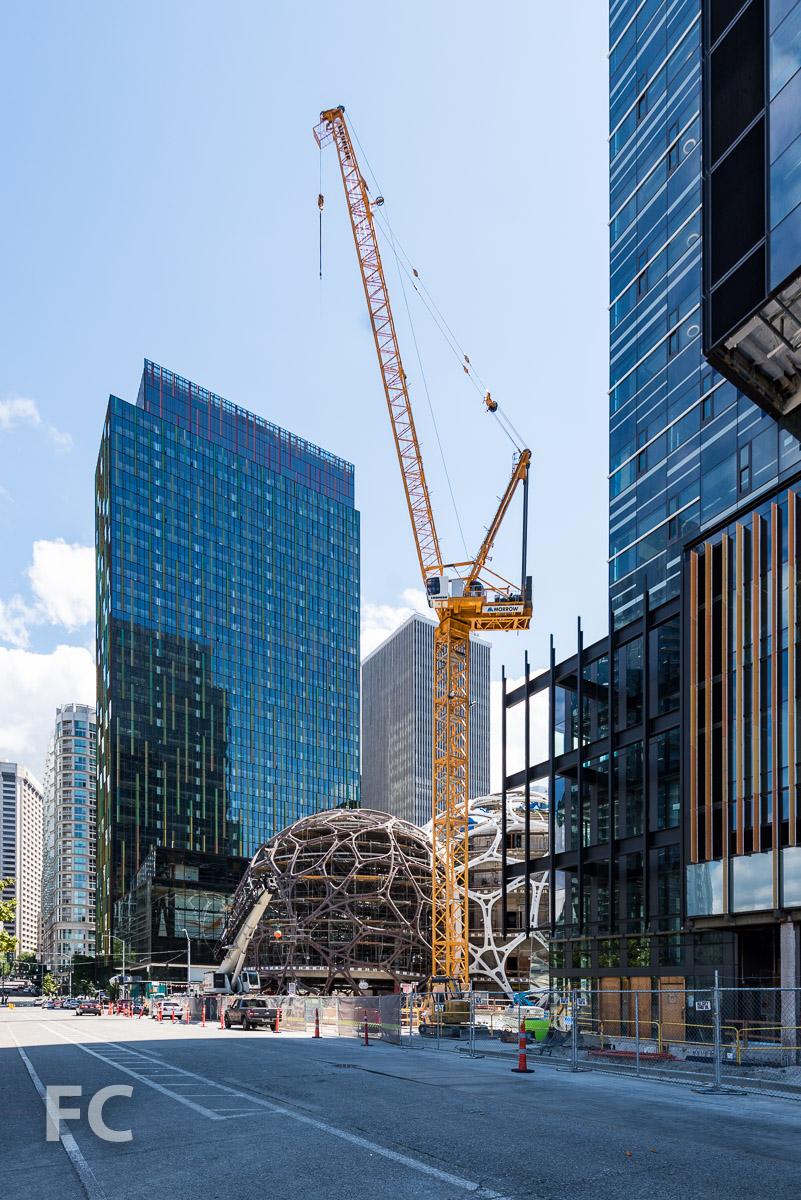 Amazon Headquarters Seattle Field Condition