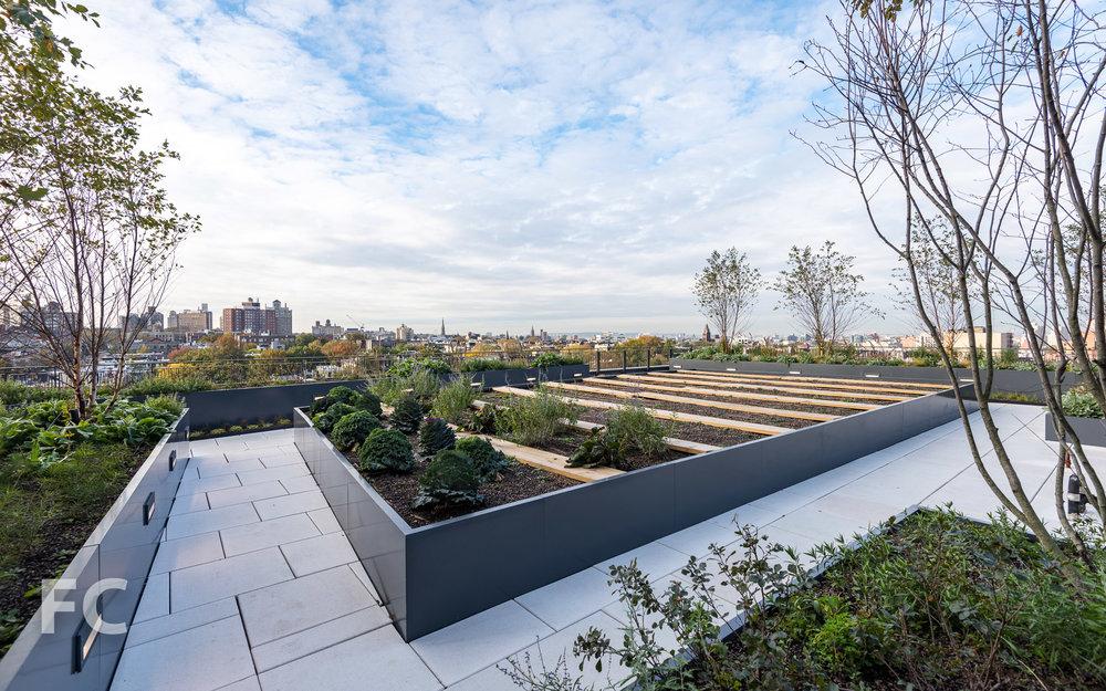 Rooftop garden.