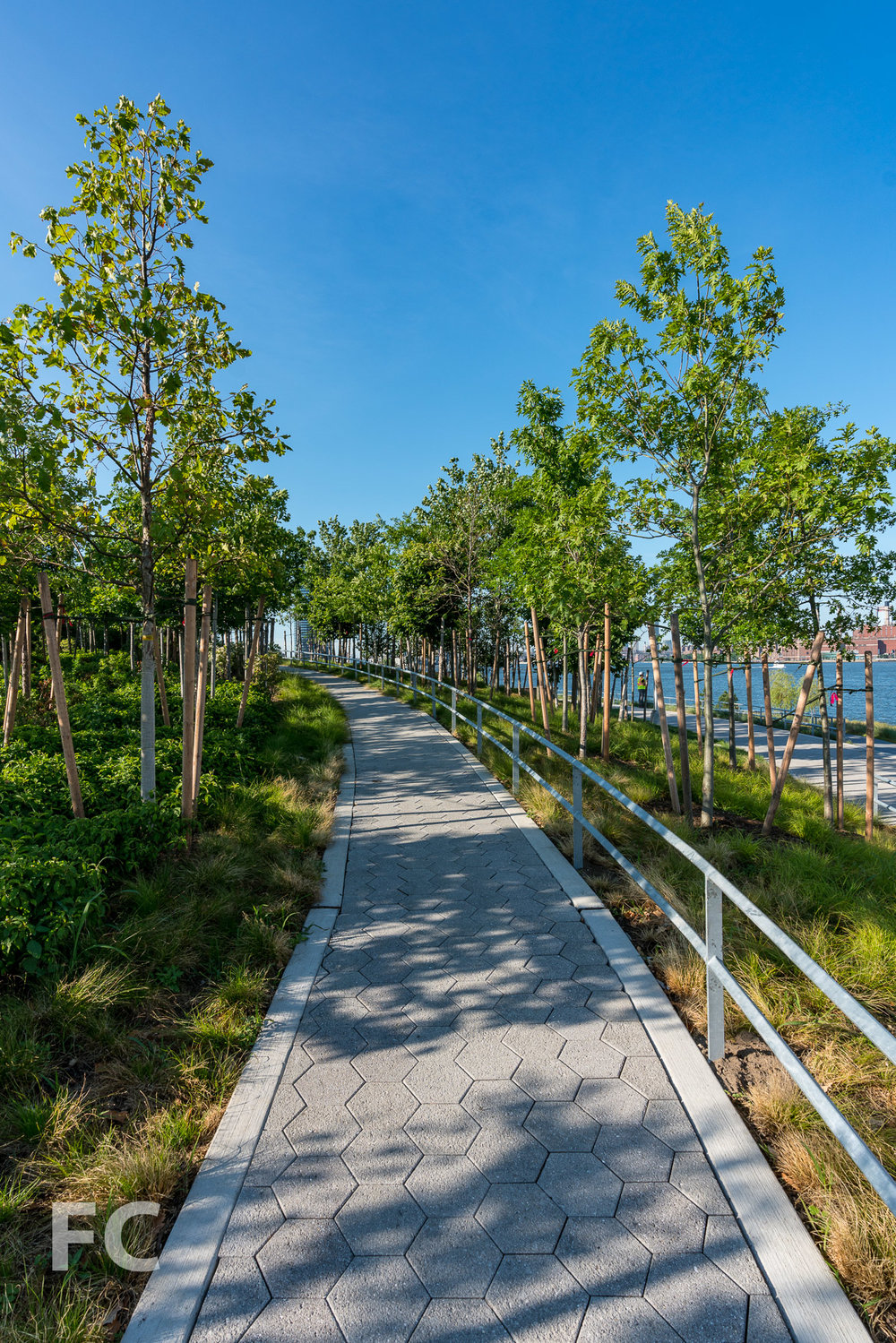 2018_06_25-Hunters Point South Park Phase 2-DSC01779.jpg