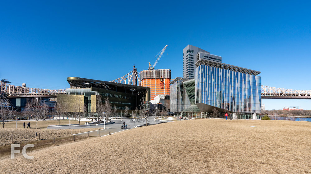 View of the Cornell Tech campus from the southern open space.