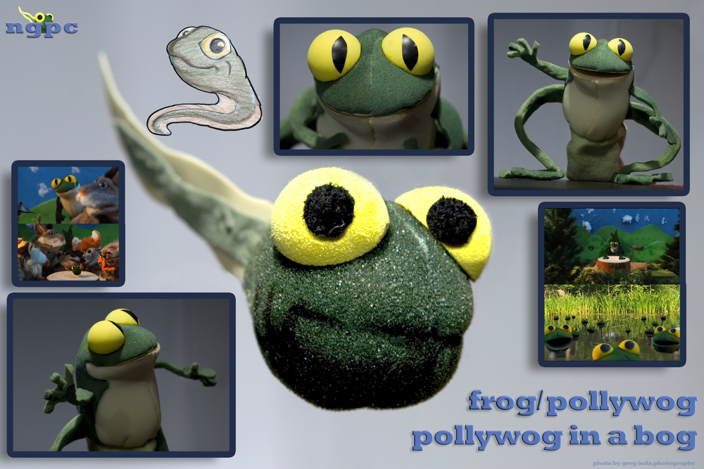 pollyfrogsmall.png