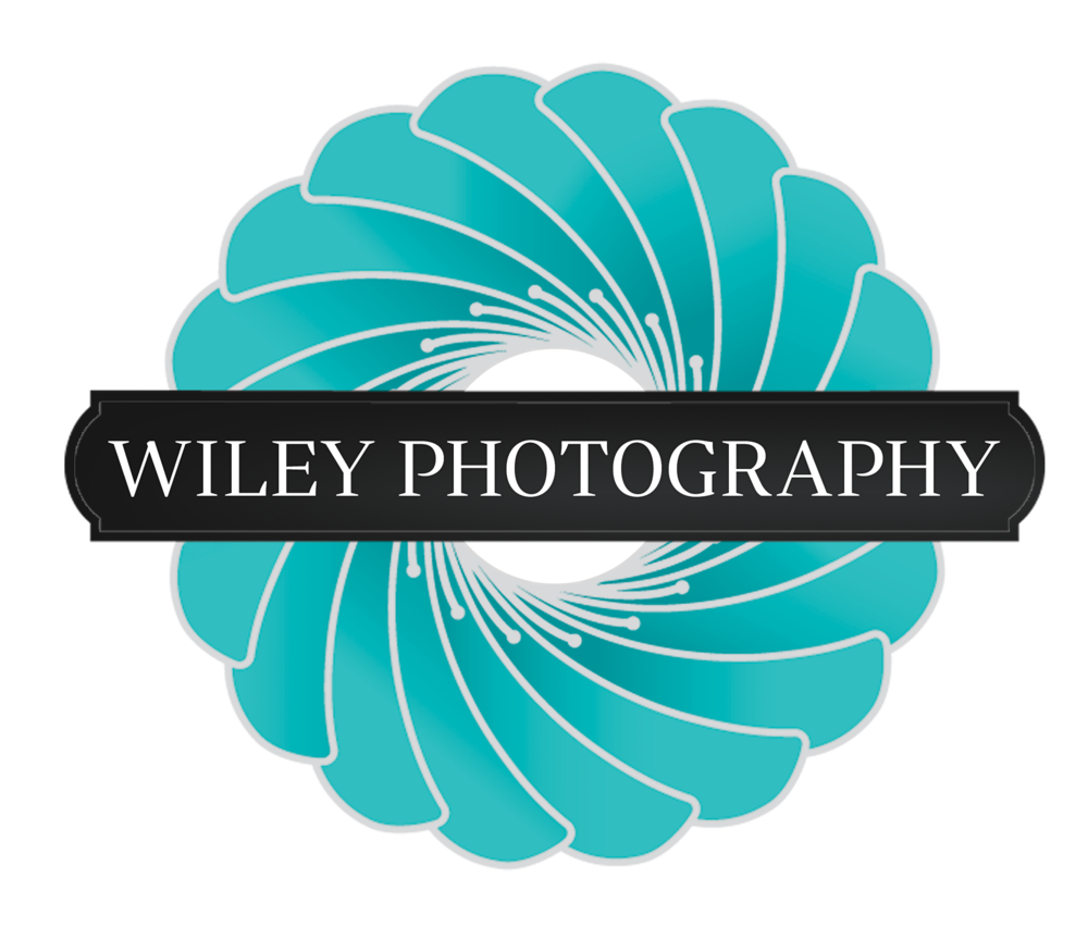 WileyPhotography-Color.png