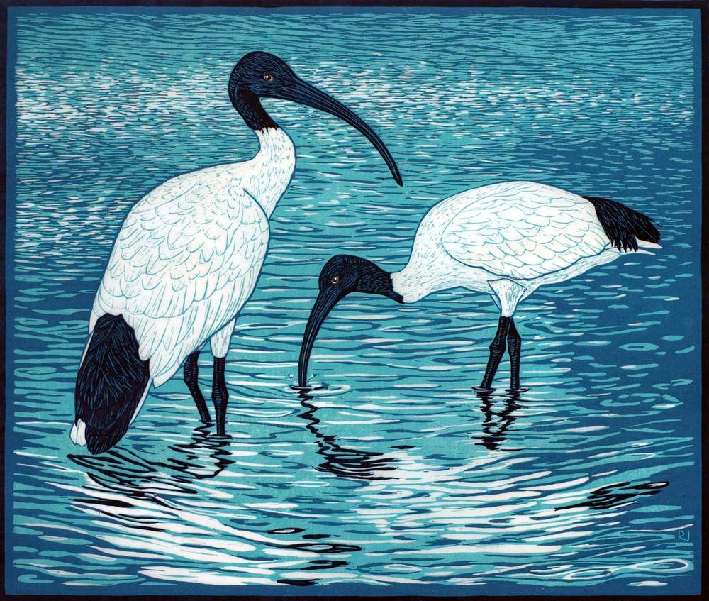 SACRED IBIS  40.5 X 48 CM    EDITION OF 13  REDUCTION LINOCUT ON HANDMADE JAPANESE PAPER  $1,500