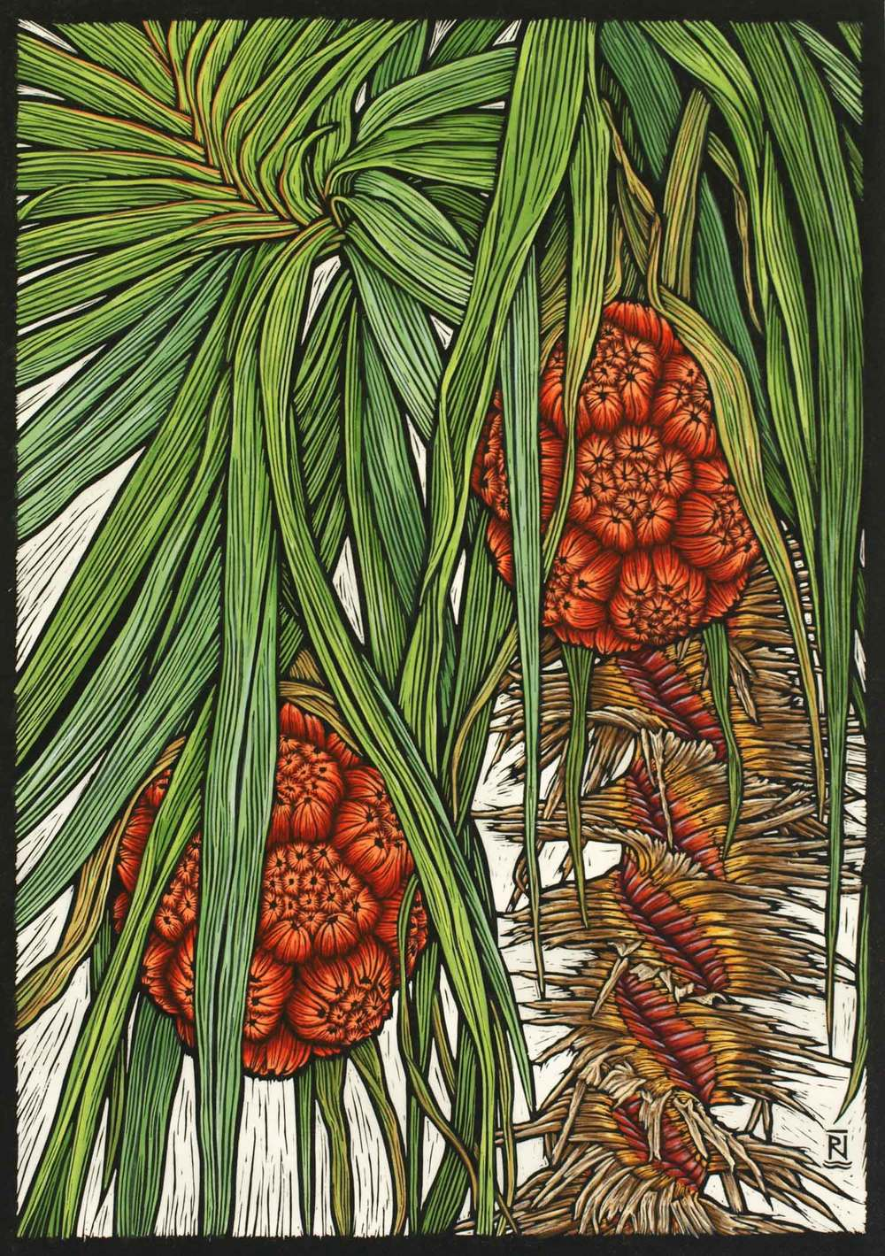 KAKADU PANDANUS  57 X 40.5 CM EDITION OF 50  HAND COLOURED LINOCUT ON HANDMADE JAPANESE PAPER  $1,350