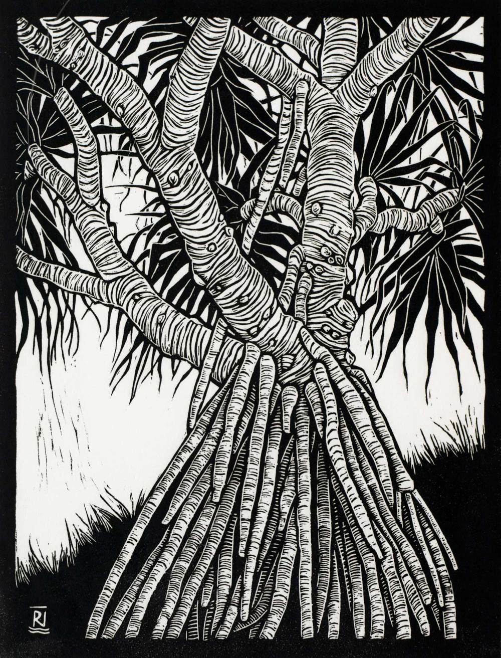 PANDANUS  29.5 X 22.5 CM EDITION OF 50  LINOCUT ON HANDMADE JAPANESE PAPER  $500