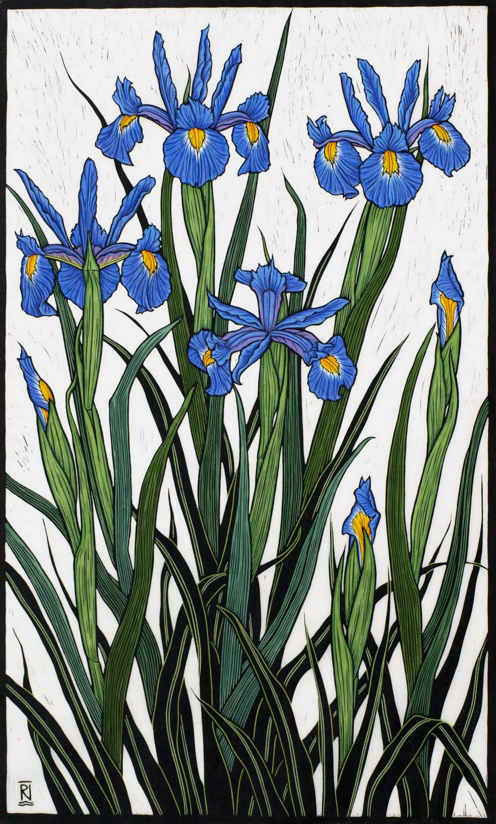IRISES  82.5 X 49.5 CM    EDITION OF 50  HAND COLOURED LINOCUT ON HANDMADE JAPANESE PAPER  $1,550