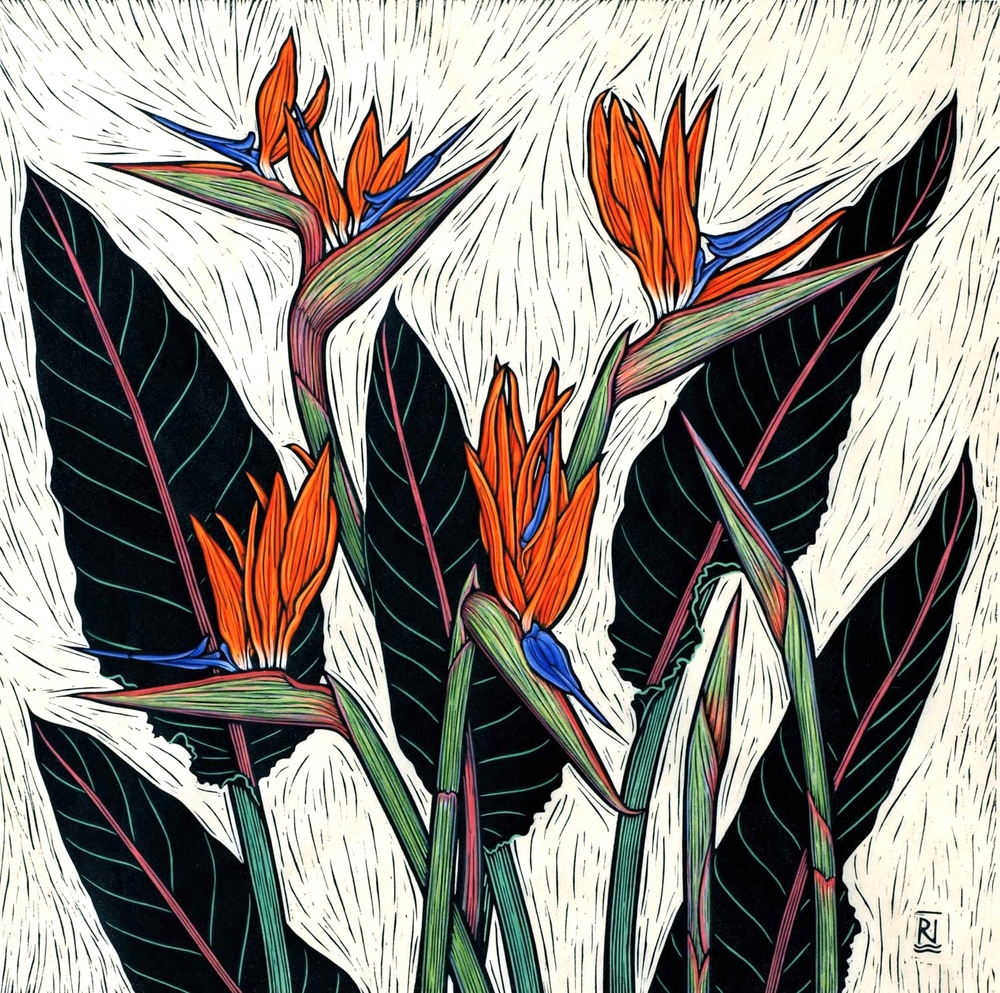 BIRD OF PARADISE FLOWER  51 X 51 CM EDITION OF 50  HAND COLOURED LINOCUT ON HANDMADE JAPANESE PAPER  $1,150